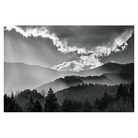 Wood Camp Light Product Tile Image 1130151
