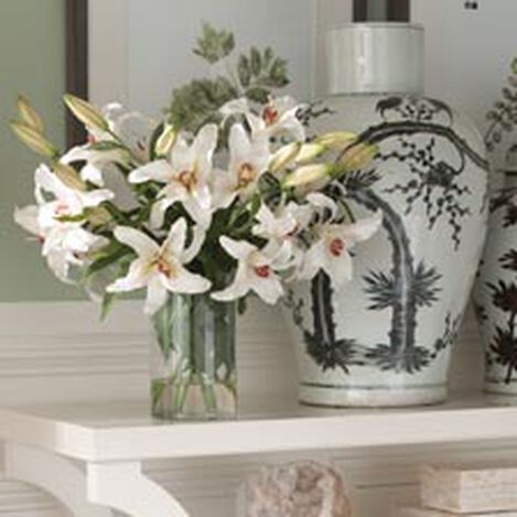 Casablanca Lily Watergarden Product Tile Hover Image 446625