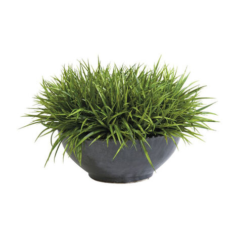Sword Grass in Bowl Product Tile Image 444049