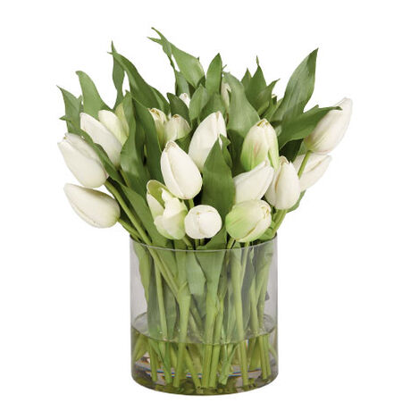 White Tulip Watergarden ,  , large