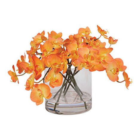 Orchids in Glass Cylinder Product Tile Image 446377