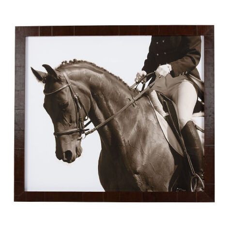 Show Horse Product Tile Image 073446