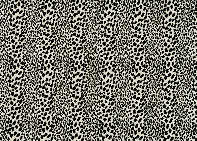 Congo Black Fabric by the Yard