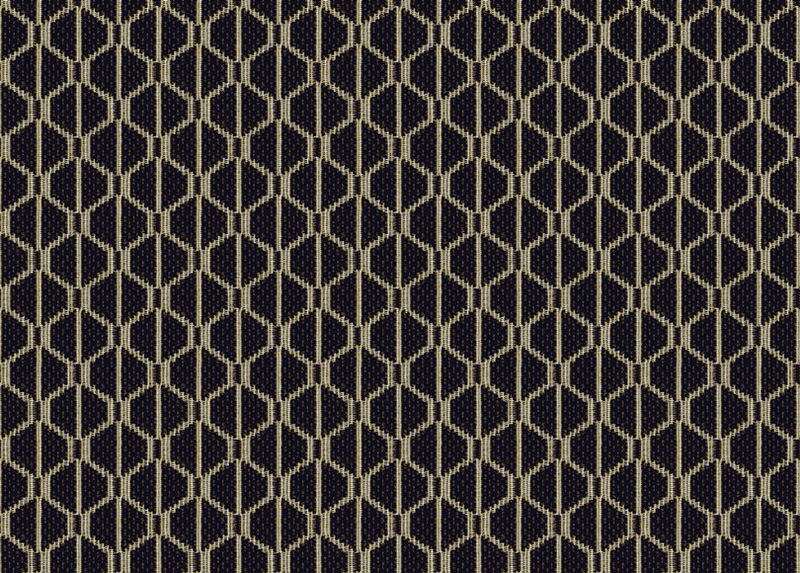 Ruba Onyx Fabric by the Yard