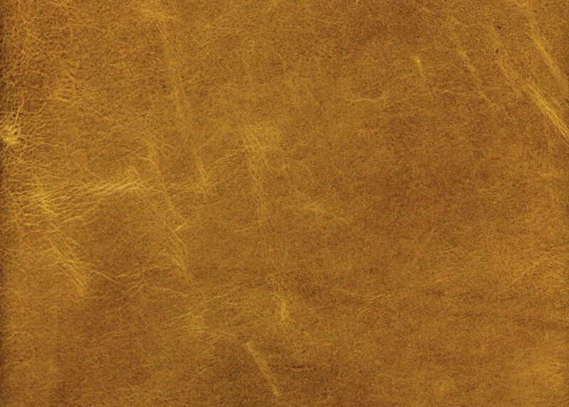 Astor Fawn Leather Swatch