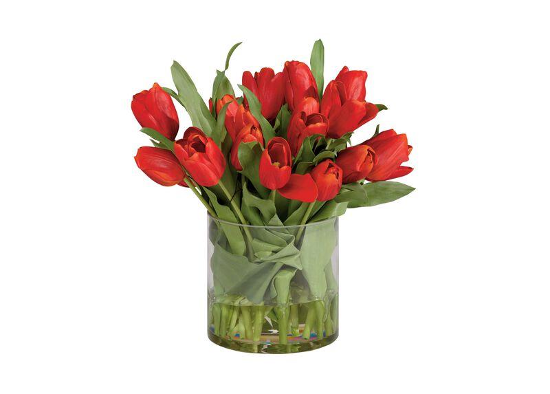 Red Tulip Watergarden