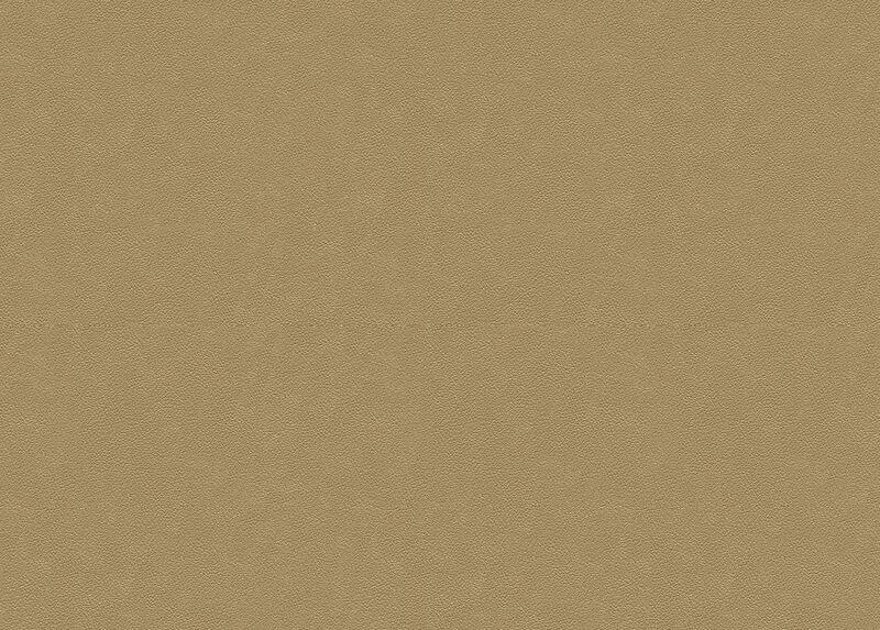 Sonora Bone Leather Swatch