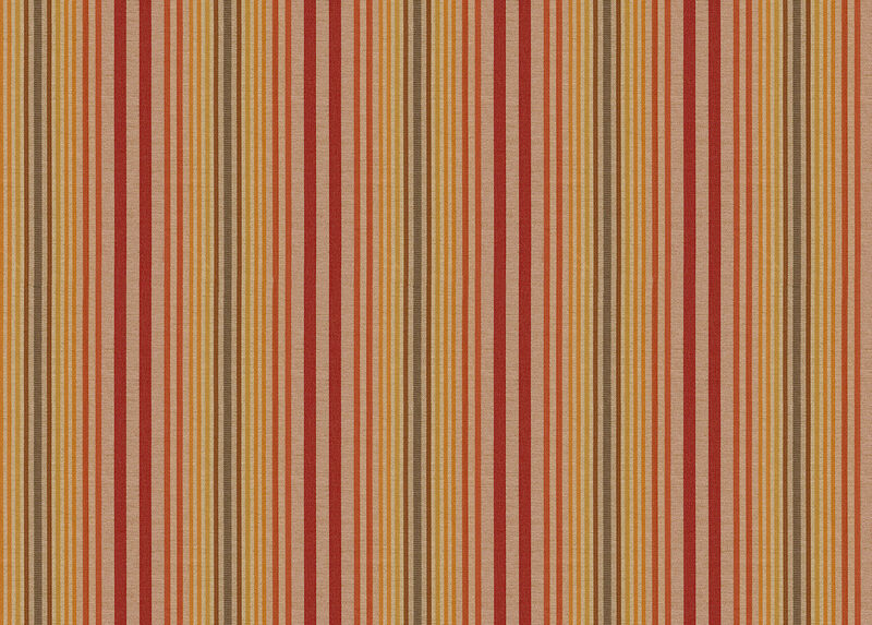 Jimmy Spice Fabric by the Yard