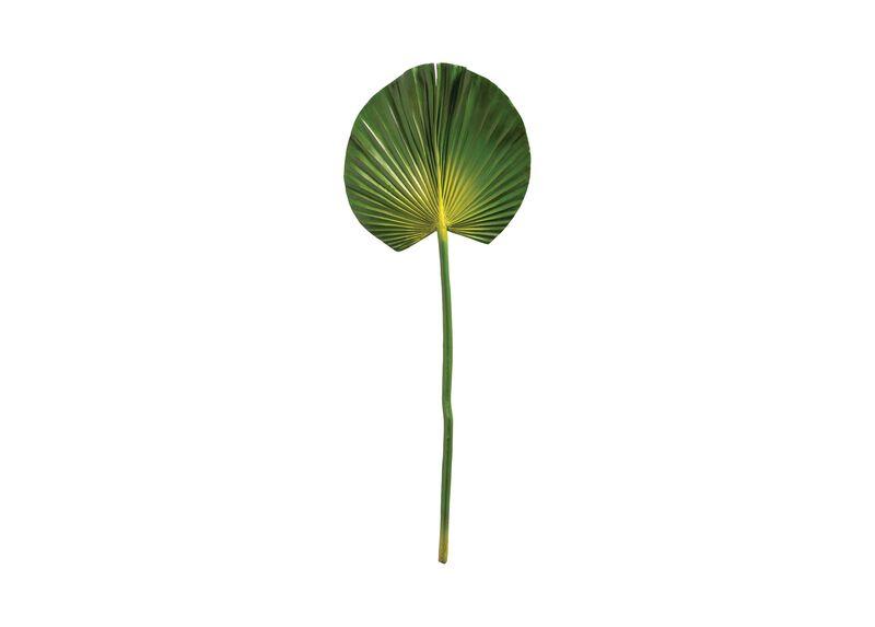 """29"""" Fan Palm Leaf  (set of 2)"""