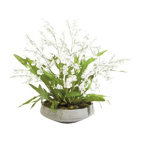 White Oncidiums in Aged Bowl Product Tile Image 444549