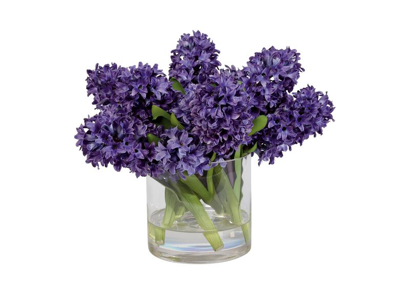 Purple Hyacinth Watergarden ,  , large_gray