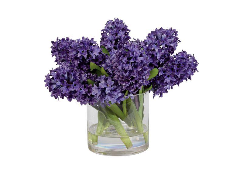 Purple Hyacinth Watergarden ,  , large_gray