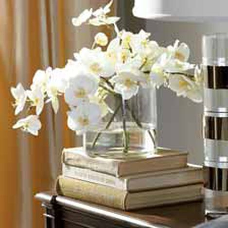 White Orchids in Glass Cylinder ,  , hover_image