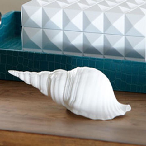 Triton Shell ,  , hover_image