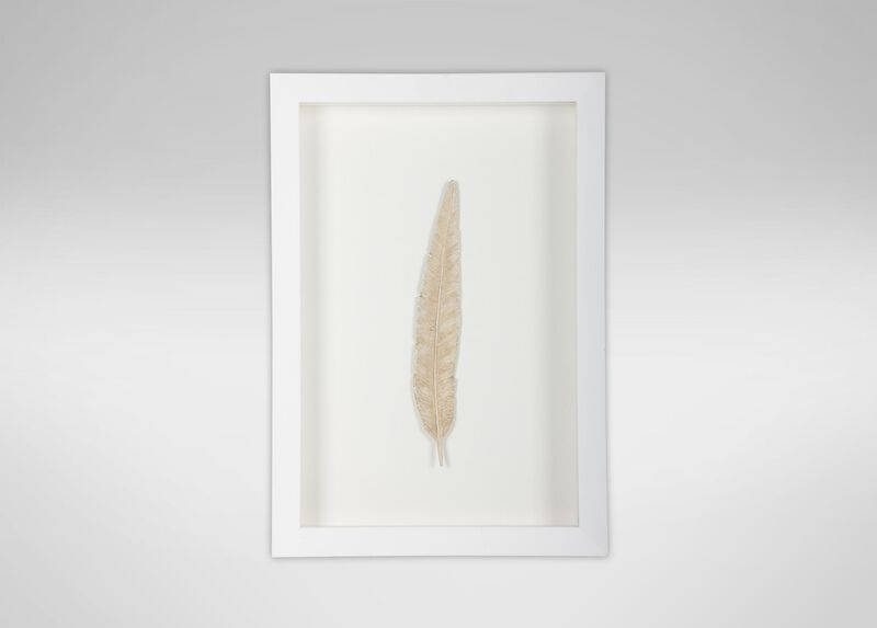 Gold Pheasant Feather ,  , large_gray