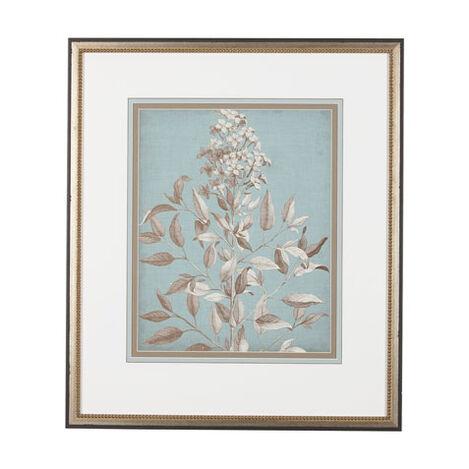 Framed Botanical Prints Framed Botanicals Amp Floral Art