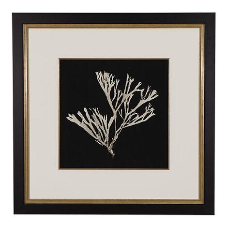 Seaweed on Black II Product Tile Image 073407B