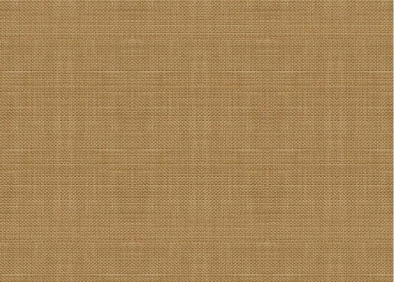 Springer Honey Swatch ,  , large_gray