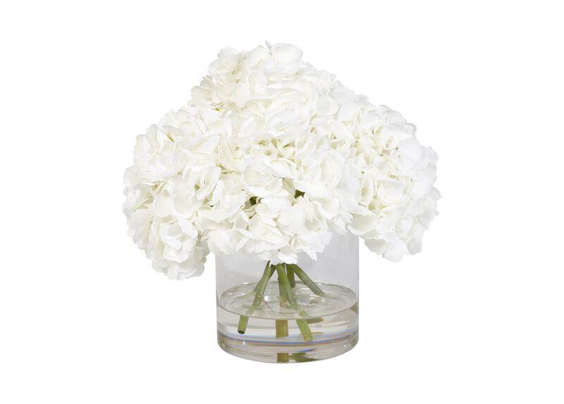 White Hydrangea Watergarden