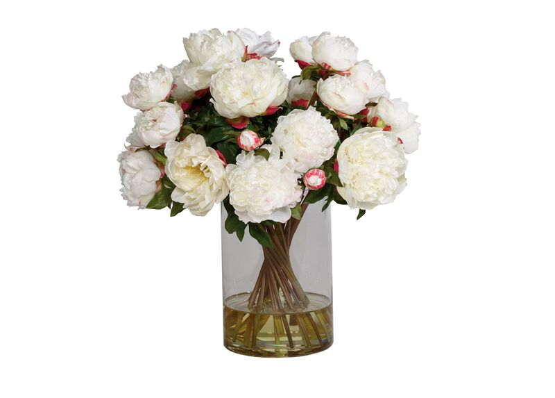 Tall White Peony Watergarden ,  , large_gray