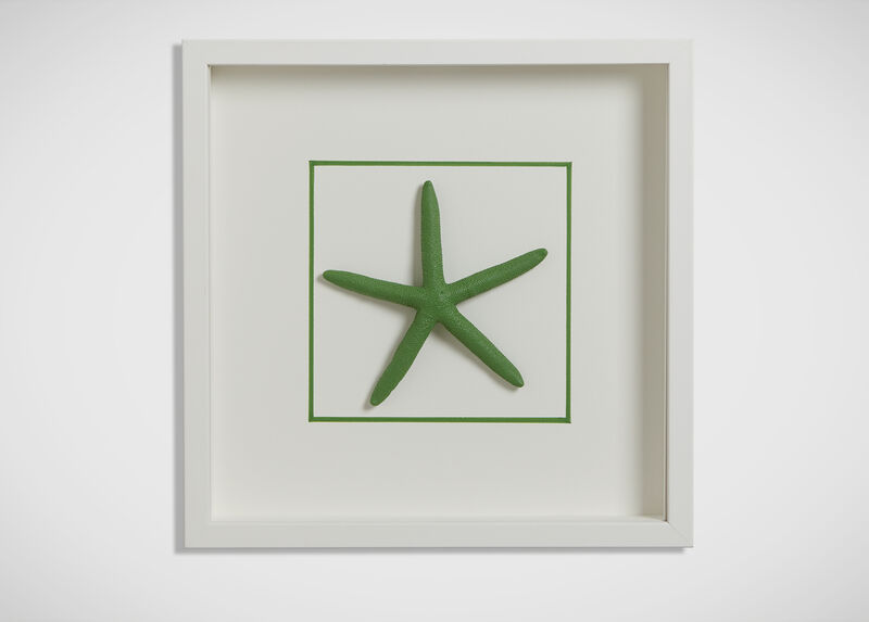 Kelly Green Starfish ,  , large_gray