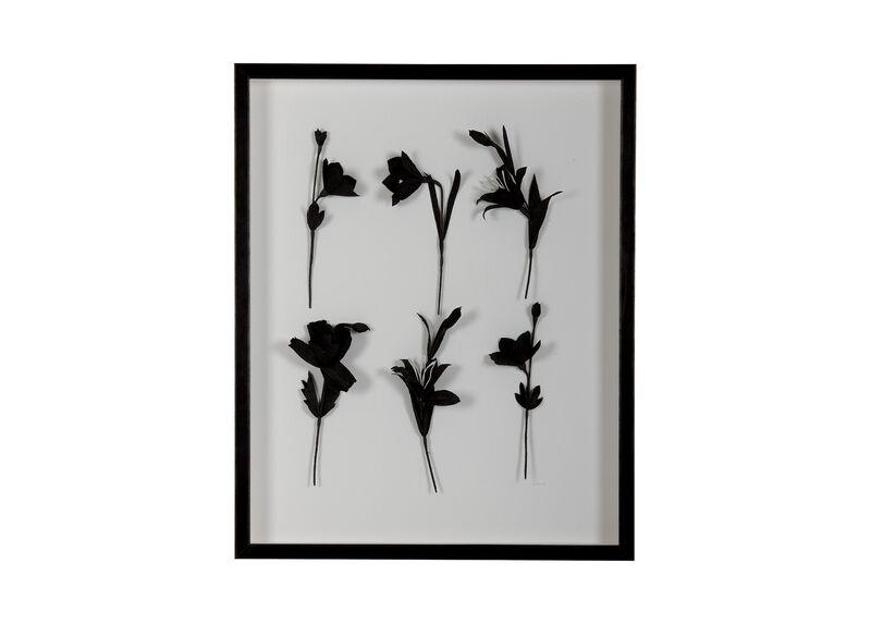 Ebony Flowers I