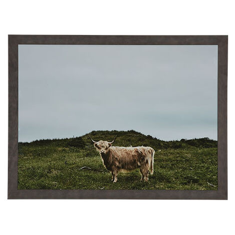 Europe Longhorn Product Tile Image 073112