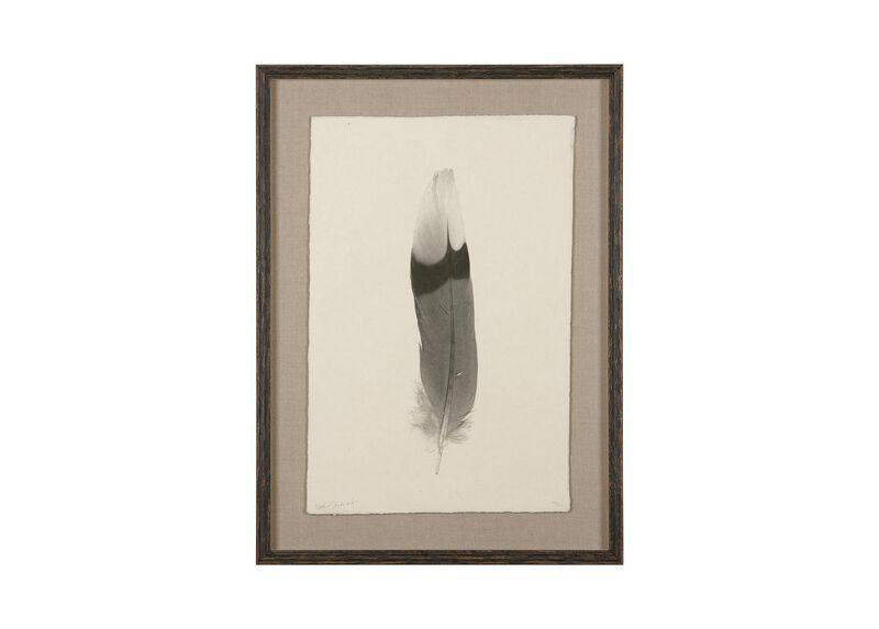 Feather Study III