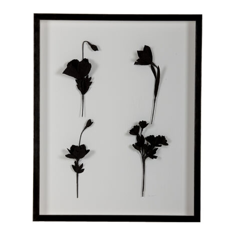 Ebony Flowers II Product Tile Image 079612B