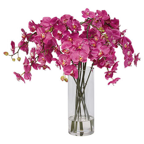 Orchids in Tall Glass Vase Product Tile Image 446376