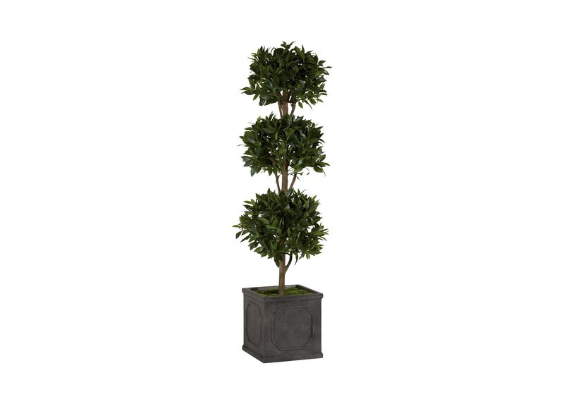 Triple Bayleaf Ball Topiary ,  , large_gray