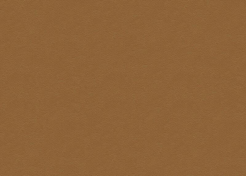 Sherwood Camel Leather Swatch