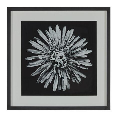 Black Botanical I Product Tile Image 073104A