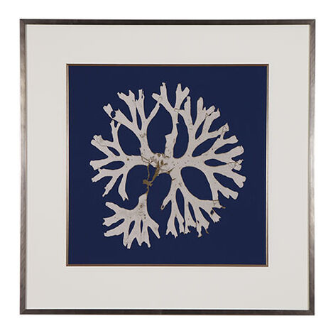 Seaweed on Navy I Product Tile Image 073421A