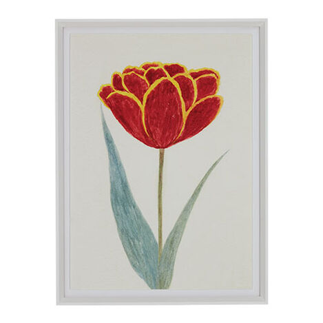 Red Tulip III Product Tile Image 073122C