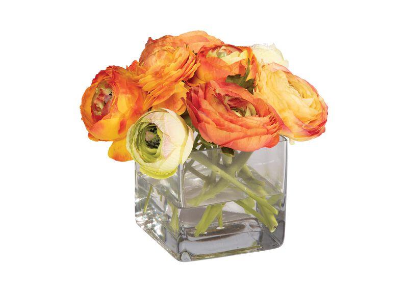 Orange Ranunculus in Cube Vase