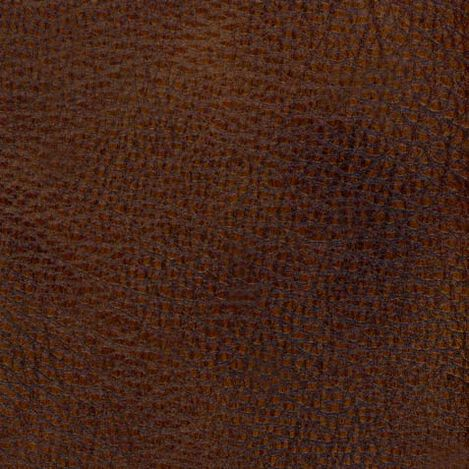 Omni Sienna Swatch ,  , large