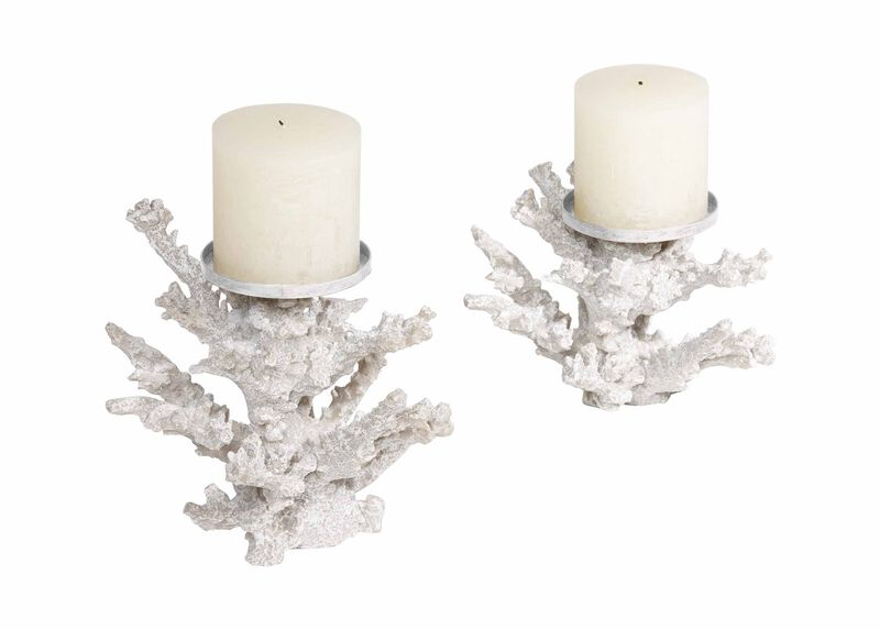 Staghorn Coral Candlestand