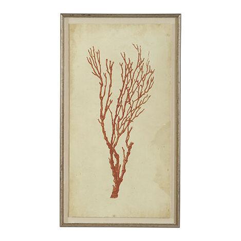 Antique Coral Specimen A Product Tile Image 073009A