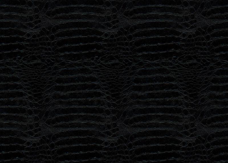 Jasper Black Leather Swatch