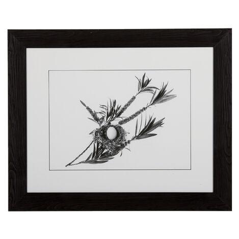 Graphic Nest II ,  , large