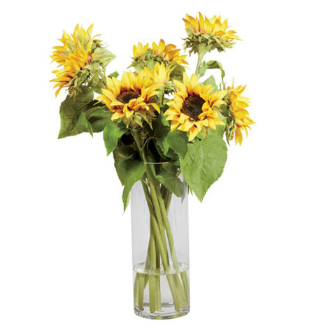 Sunflowers in Tall Vase Product Tile Image 442254