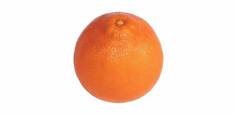 Decorative Orange (set of 6)