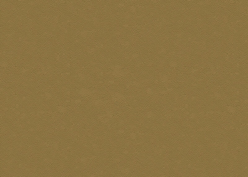 Sherwood Tan Leather Swatch