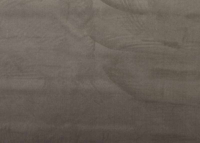 Weir Ash Fabric