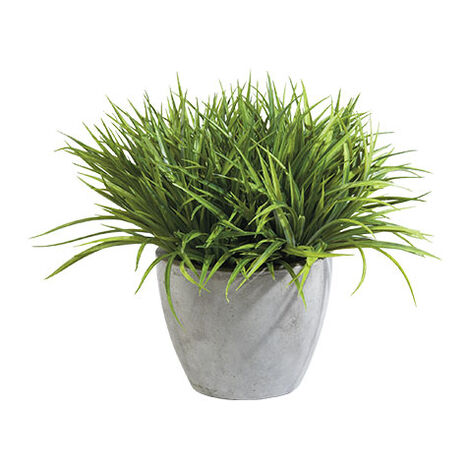 Grass in Aged Gray Pot Product Tile Image 444048