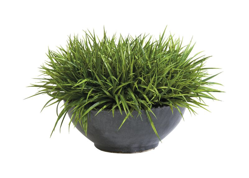 Sword Grass in Bowl ,  , large_gray
