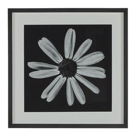 Black Botanical III Product Tile Image 073104C