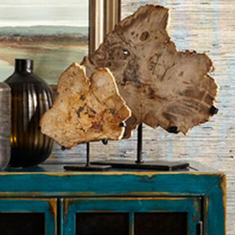 Medium Petrified Wood on Stand Product Tile Hover Image 438485B