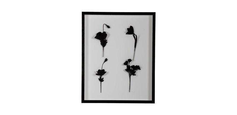 Ebony Flowers II
